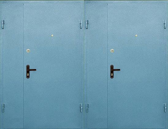 Тамбурная дверь с порошковым напылением  арт. тбд-23